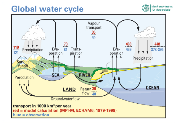 The Global Water Cycle Worksheet The free download water cycle – Water Cycle Worksheet Pdf