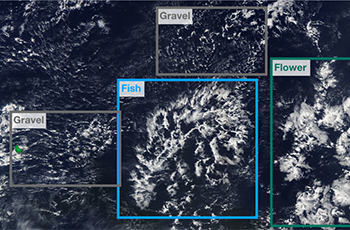 """Cloud pattern classification example in """"gravel, fish, and flower"""". Imagery from NASA Worldview."""